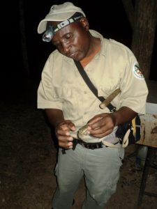 Chaa Creek Belize Naturalist Guide