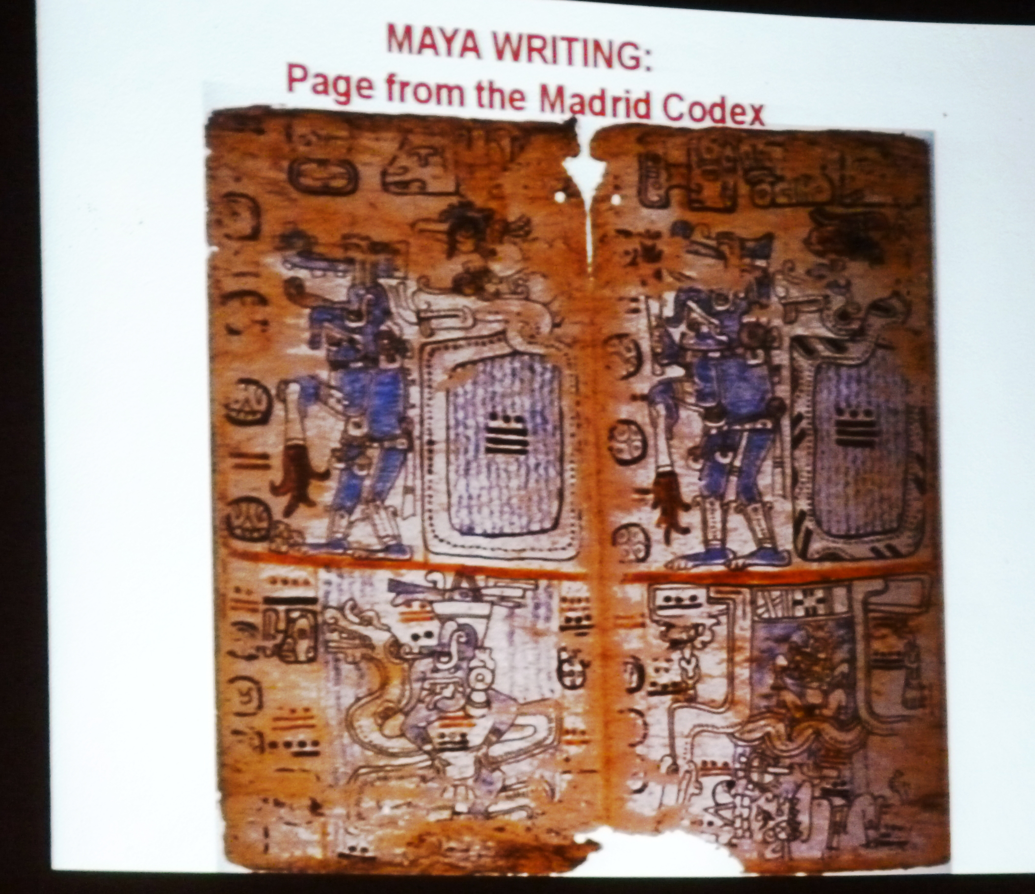 maya-art