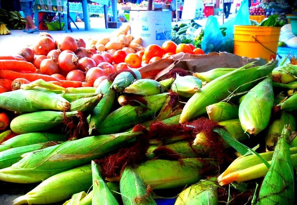san ignacio market day