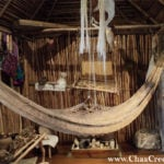 The Hammock of the Maya