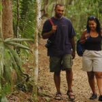 Eco-friendly Ways to Travel the Globe