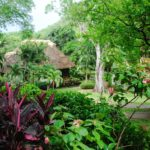 Chaa Creek – A Great Belize Eco Resort to Stay Says USA Today