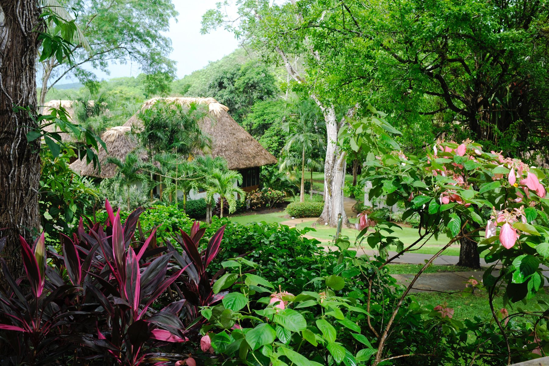 Exterior Orchard Villa