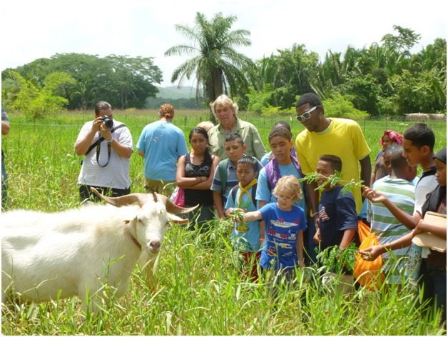 Organic Farming in Belize