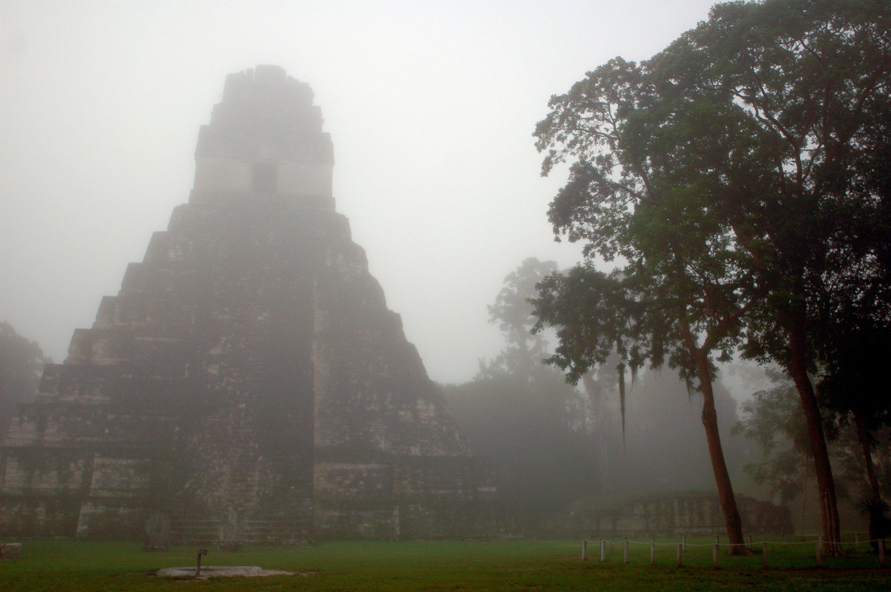 Misty Tikal