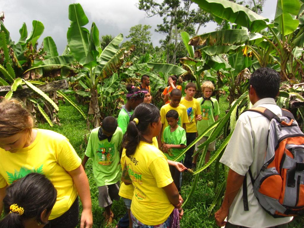 Team Blue Monkeys  learning about growing pitaya