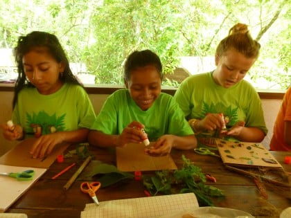 Team fireflies making jungle journals