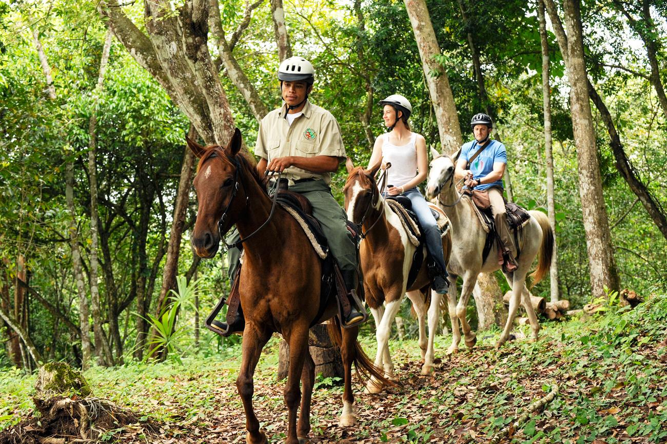 Belize-Horse-back-Riding-Equestrian-Holidays