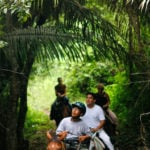 Belize-Horseback-Riding-Jungle-trails