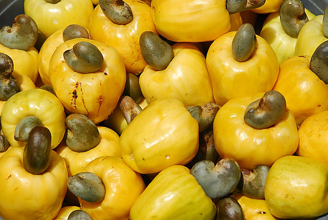how to eat cashew fruit
