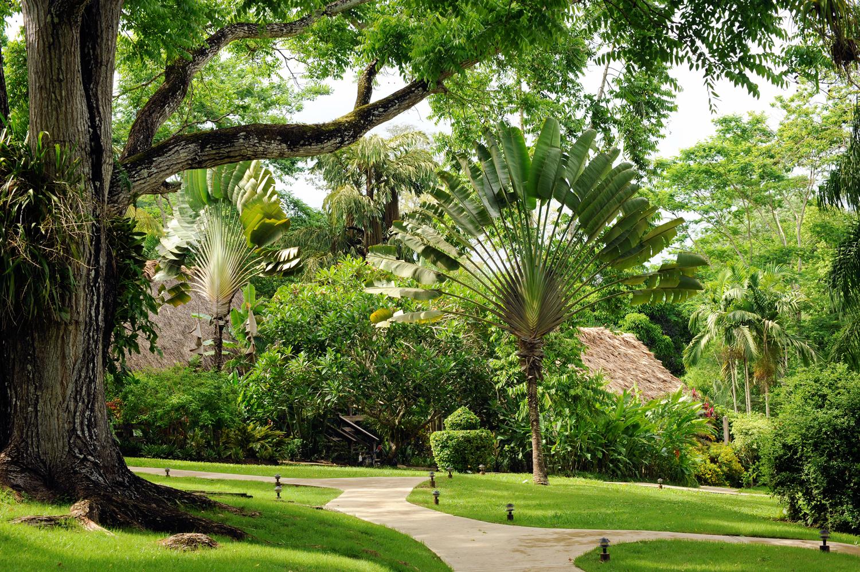 Belize-Eco-Resort-Chaa-Creek