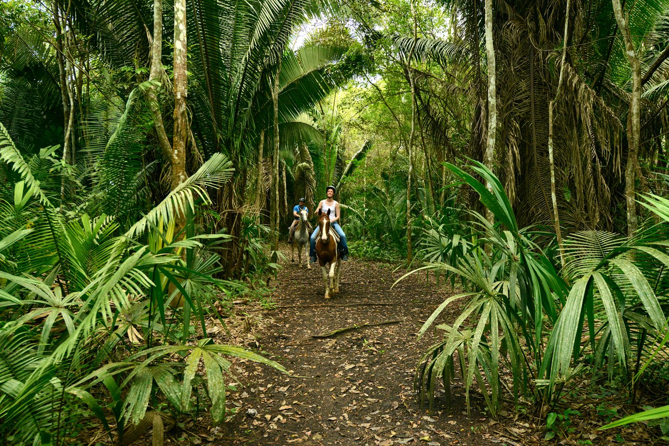 Belize-Horse-Back-riding-Chaa-Creek