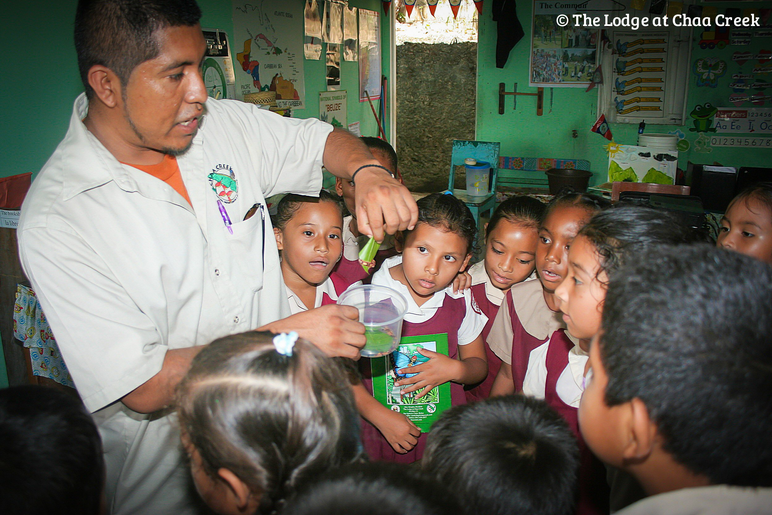 Chaa-Creek-Butterfly-on-the-road-outreach