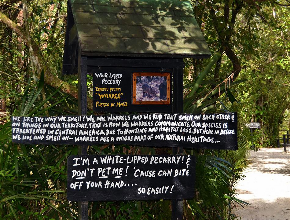 Belize-Zoo-Sign-Warning-Sustainable-Travel