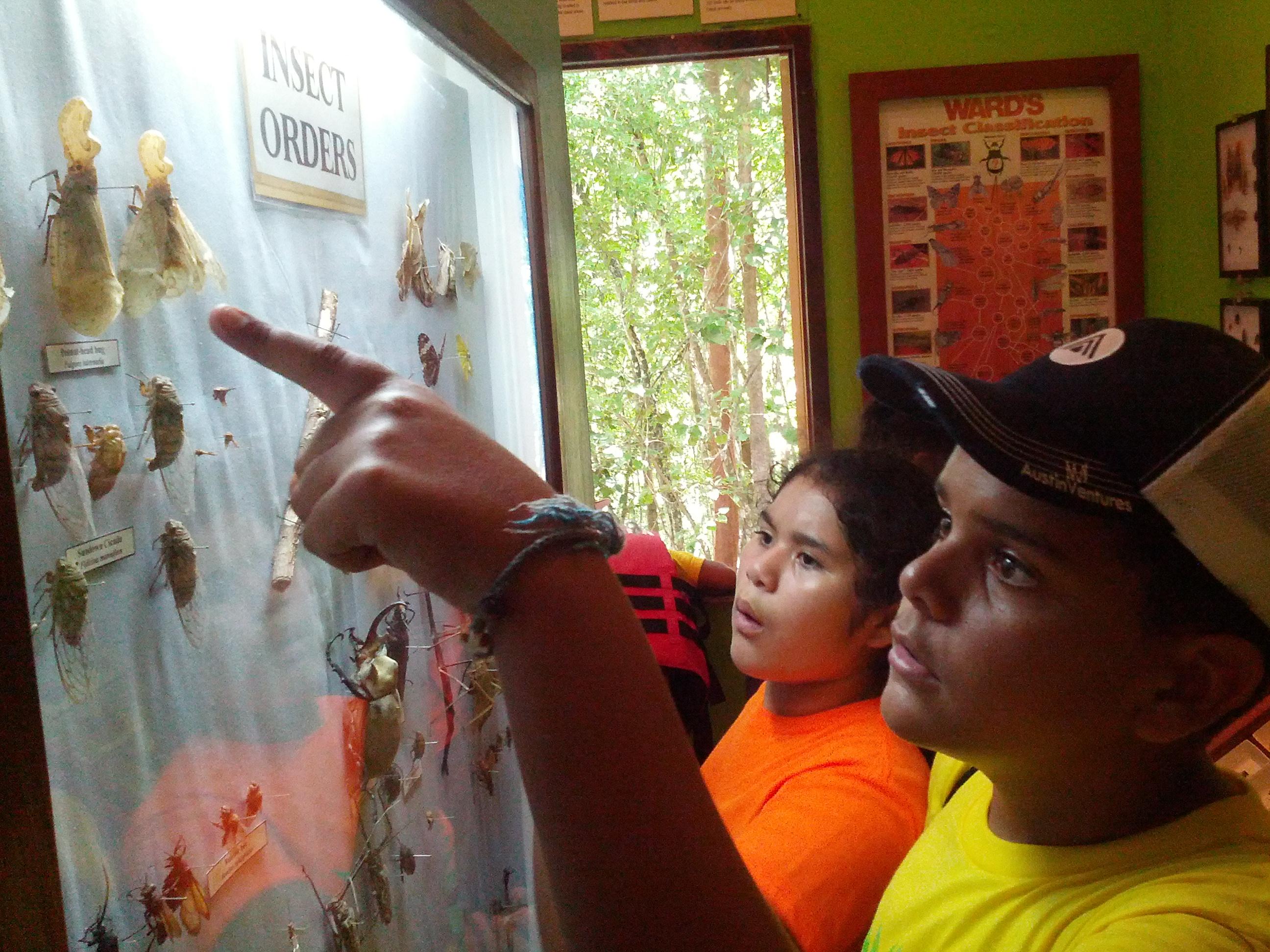 Eco-Kids-natural-history-centre