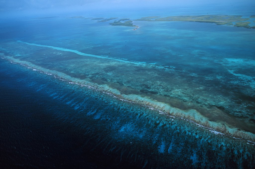 Belize Barrier Reef is the second largest barrier reef system in the western hemisphere!