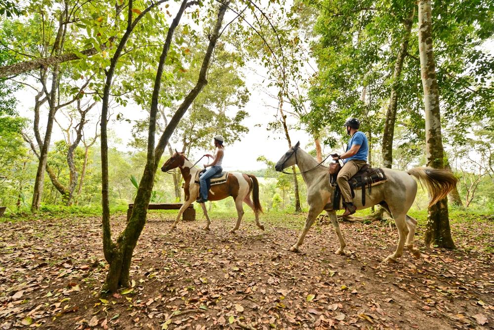Belize-Horseback-riding-tours-at-chaa-creek