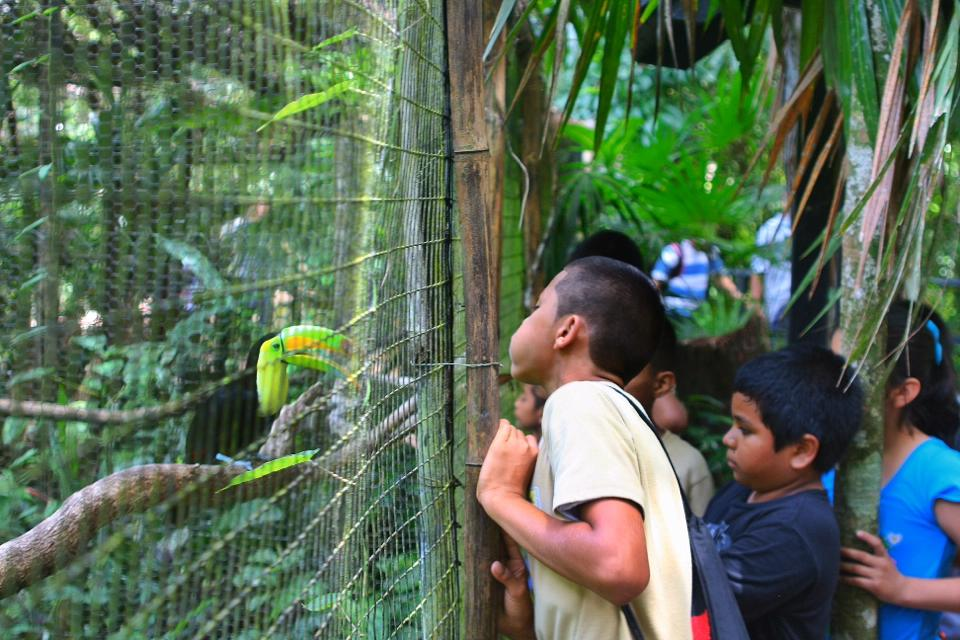 Kids-Belize-Zoo