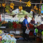 Market Day in San Ignacio: A Photo Tour!