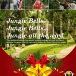 Pre-Christmas in Belize: Jungle Bells Inland Expedition