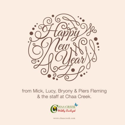 belize-Chaa-Creek-New-years-greetings