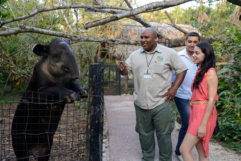 Belize-Zoo