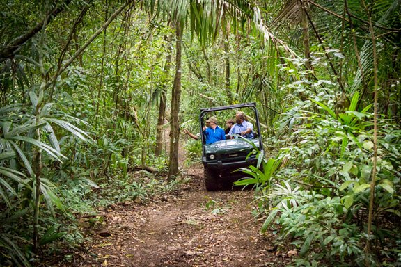 belize-buggy-mule-rainforest-safari-tours-chaa-creek-eco-lodge-1