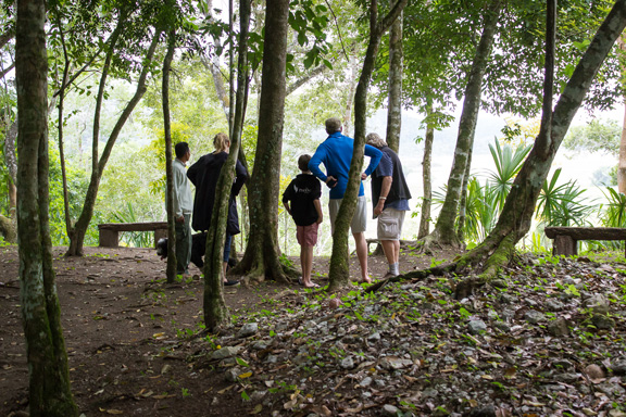 The Belize Buggy Mule Rainforest Safari  Tour is perfect for family!