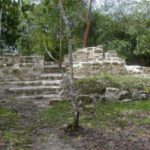 More Belize Maya Organic Farming in World News!