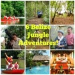 6 Belize Jungle Adventures from Chaa Creek's Nature Reserve!