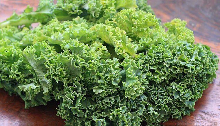 Belize-Vegetables-Kale