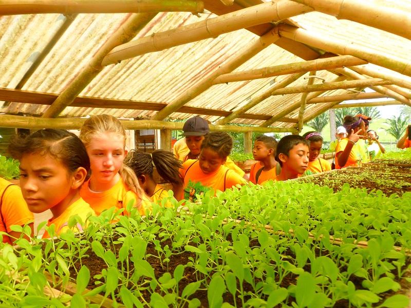 EcoKids2015-Land-conservation-1