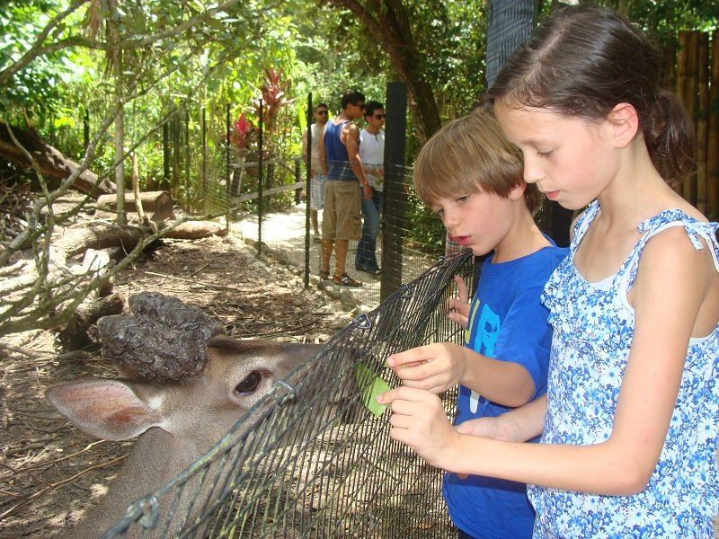 belize-zoo-with-kids