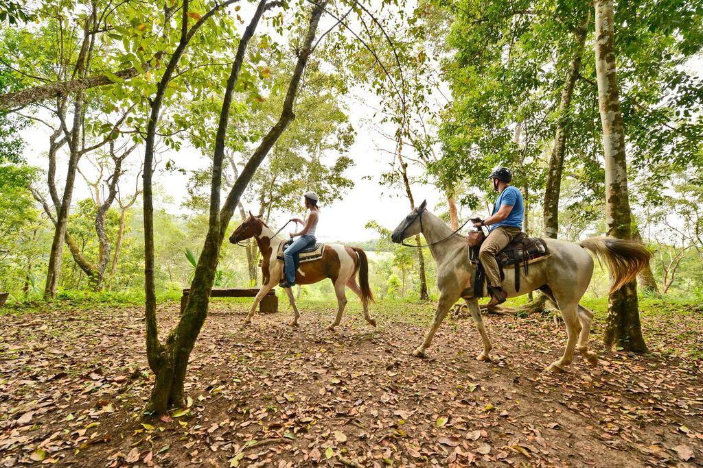 chaa-creek-horseback-riding