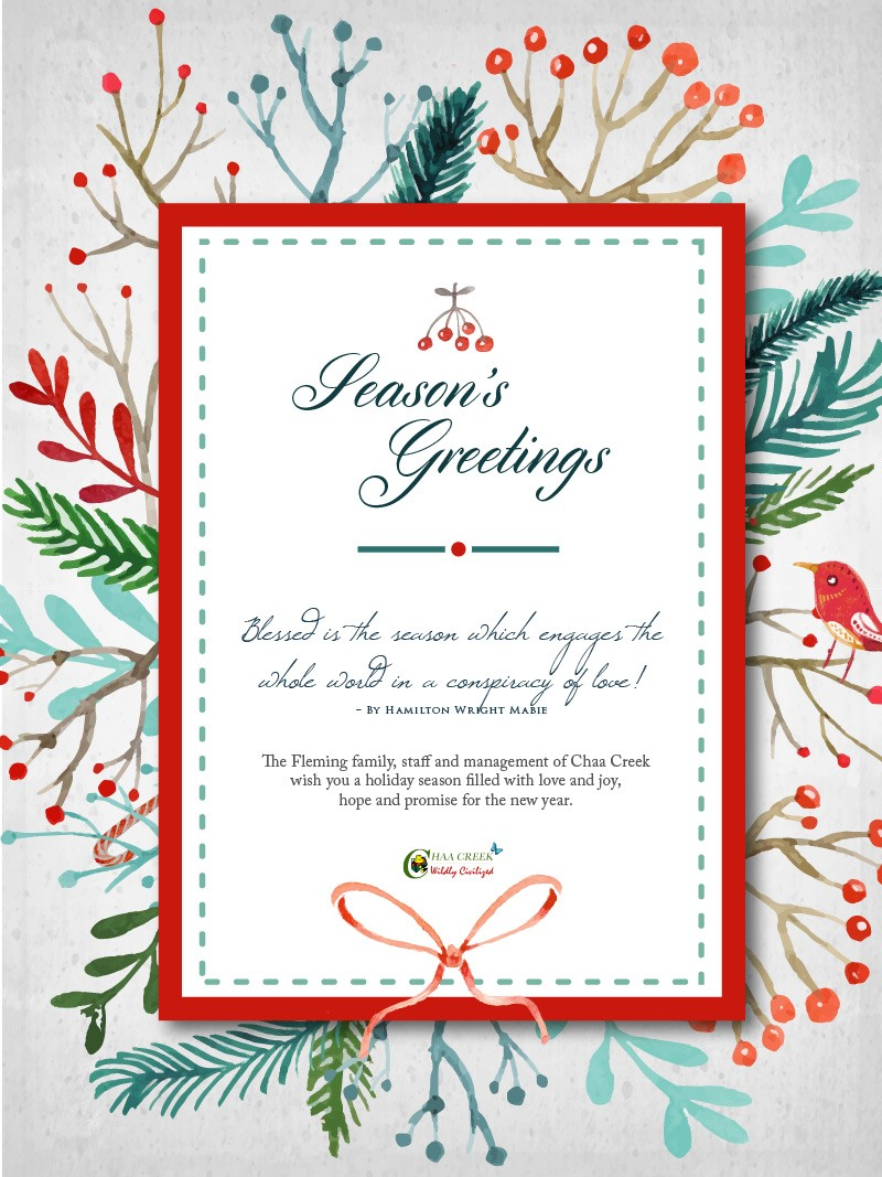 season-greetings-card