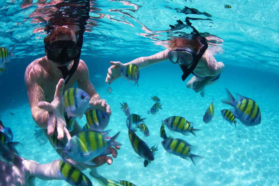 things_to_do_in_belize_snorkeling_diving_travel_guide_chaa_creek