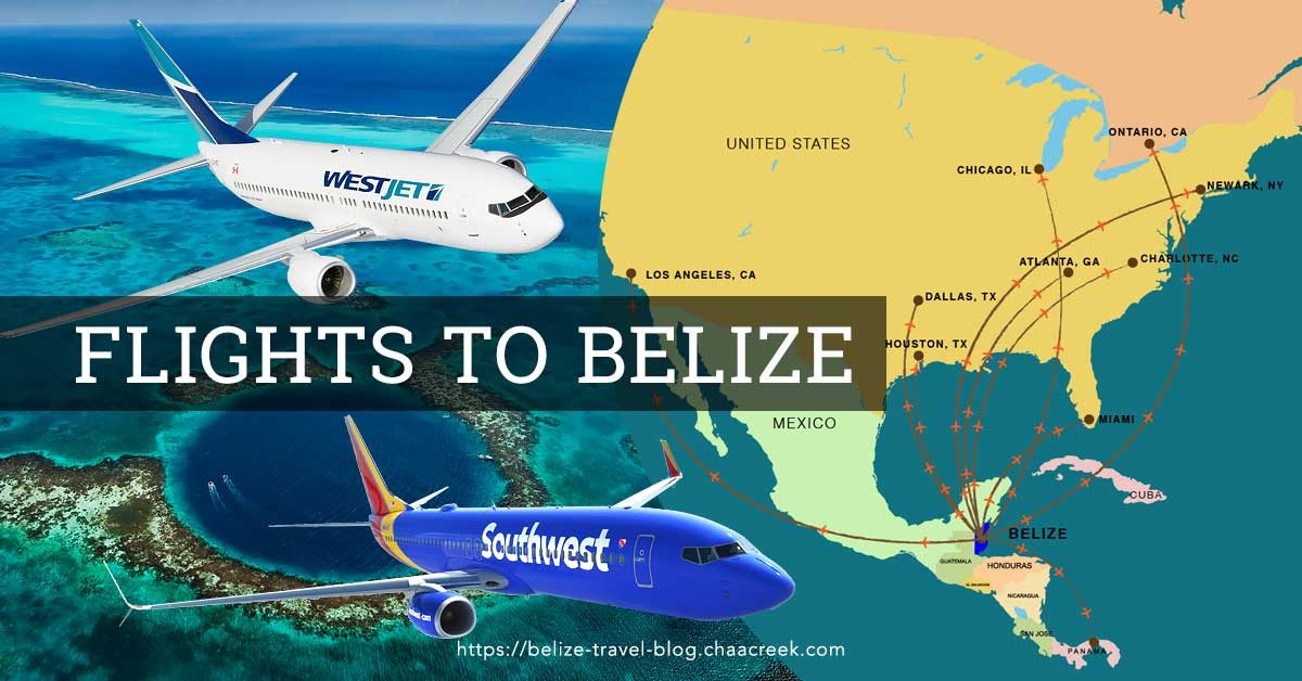 Flights To Belize Infographic Amp Flight Schedules