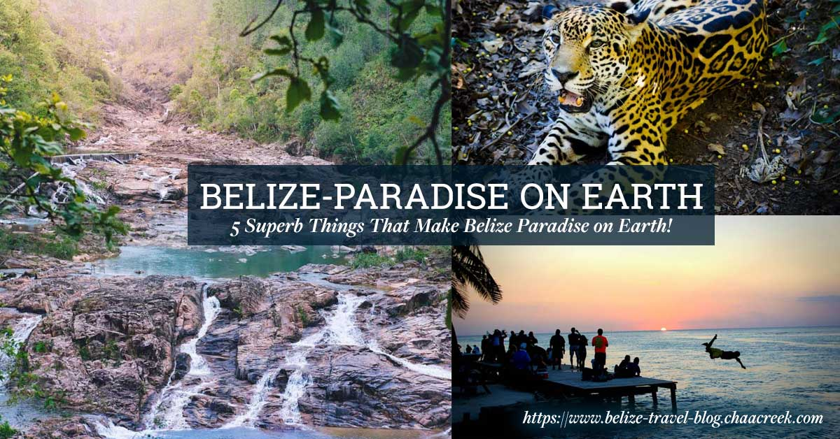 belize_paradise_on_earth_travel_guide_chaa_creek