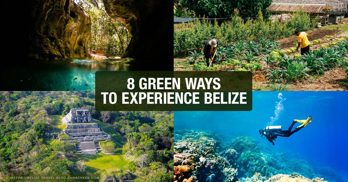8 Green Ways To Experience Belize Ecotourism