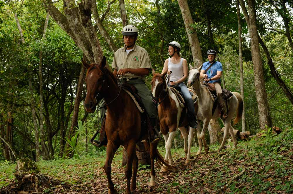 rain-forest-horse-back-riding
