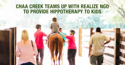 Belize Horseback Riding Hippotherapy at Chaa Creek Header
