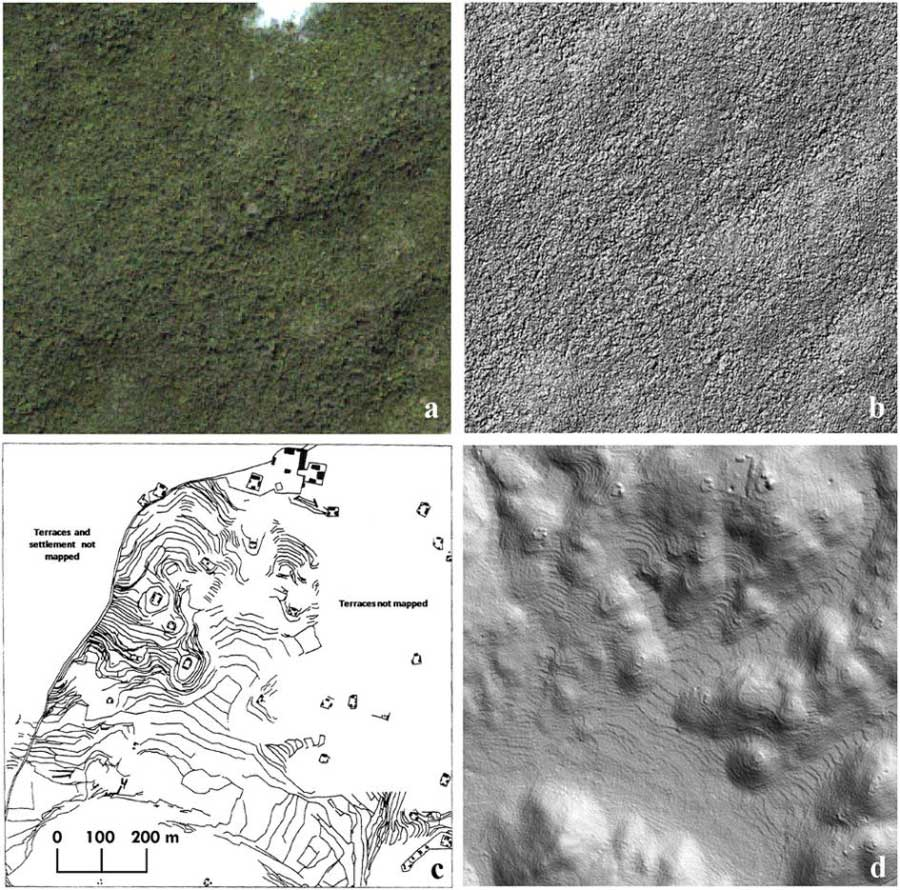 lasers reveal massive maya city in Belize