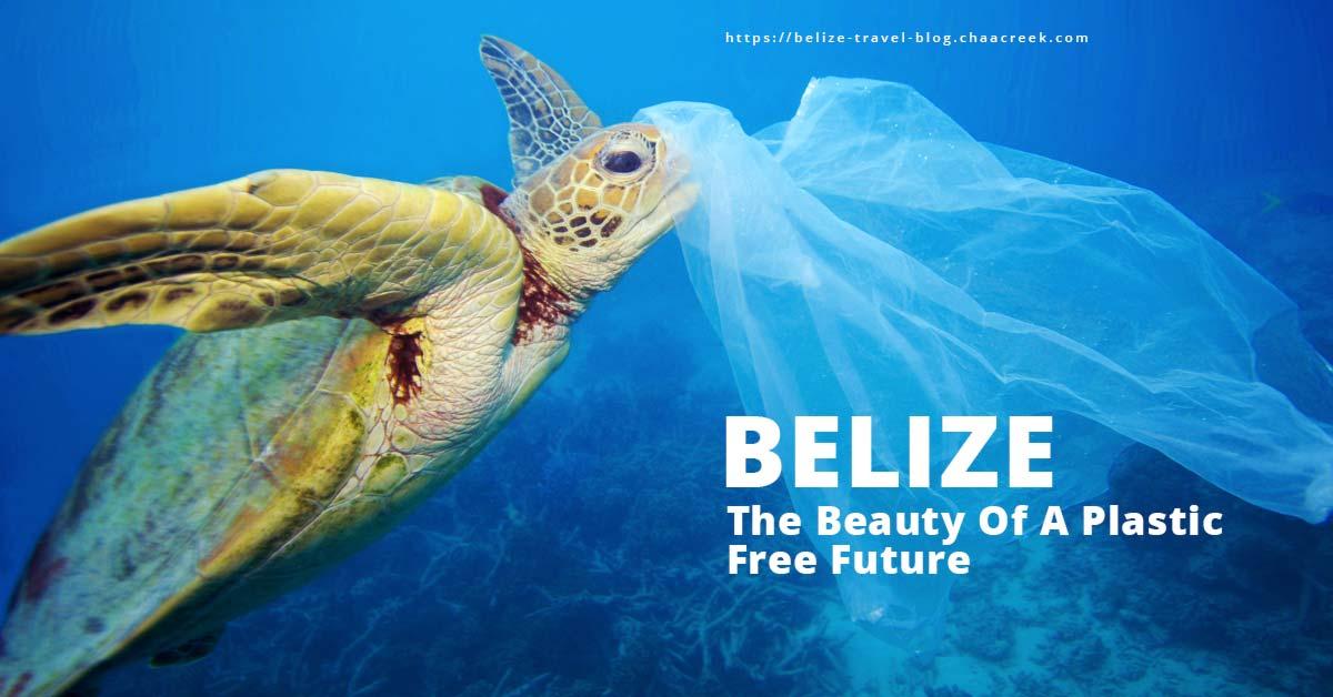 Belize ban plastics and styrofoam