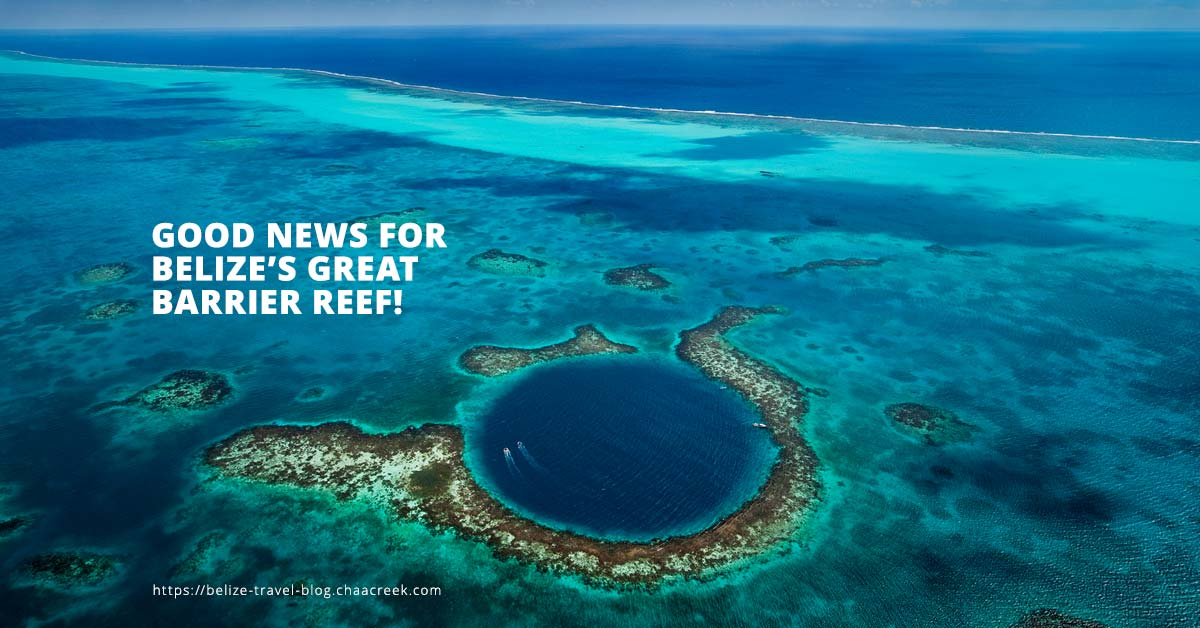 Belize Barrier Reef UNESCO Good News Header