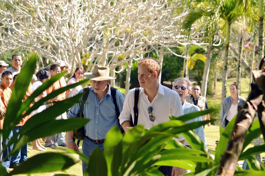 Prince Harry Wedding Honeymoon in Belize