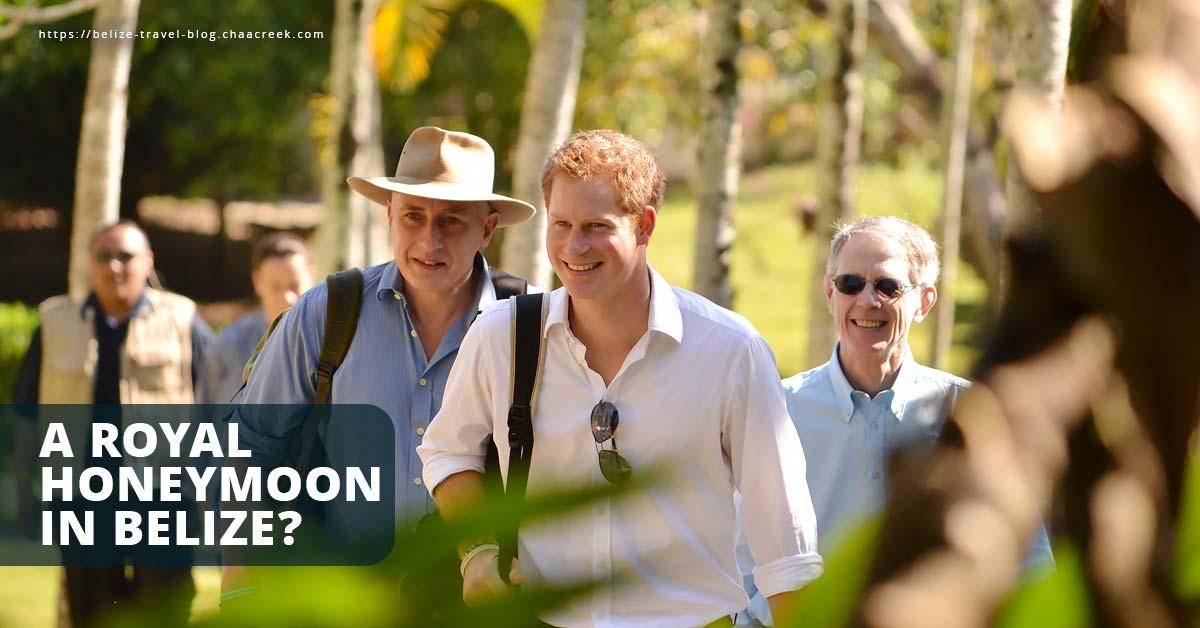 Royal Honeymoon Prince Harry Wedding in Belize