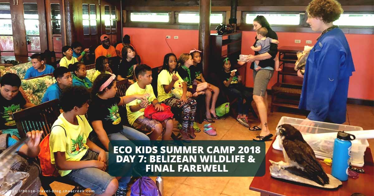 eco kids summer camp 2018 day 7 belize wildlife