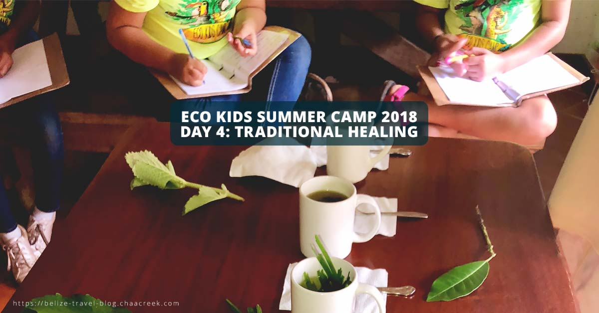 Eco Kids summer camp 2018 Day 4 traditional healing header