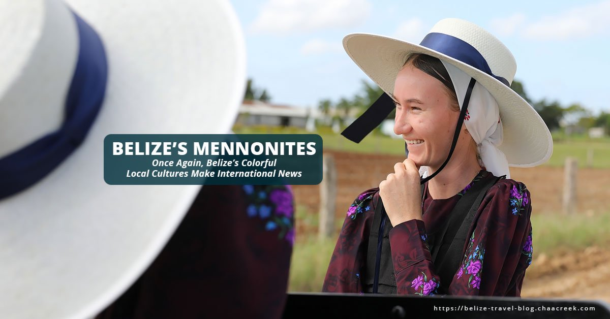 belize mennonites local cultures highlighted in new york times