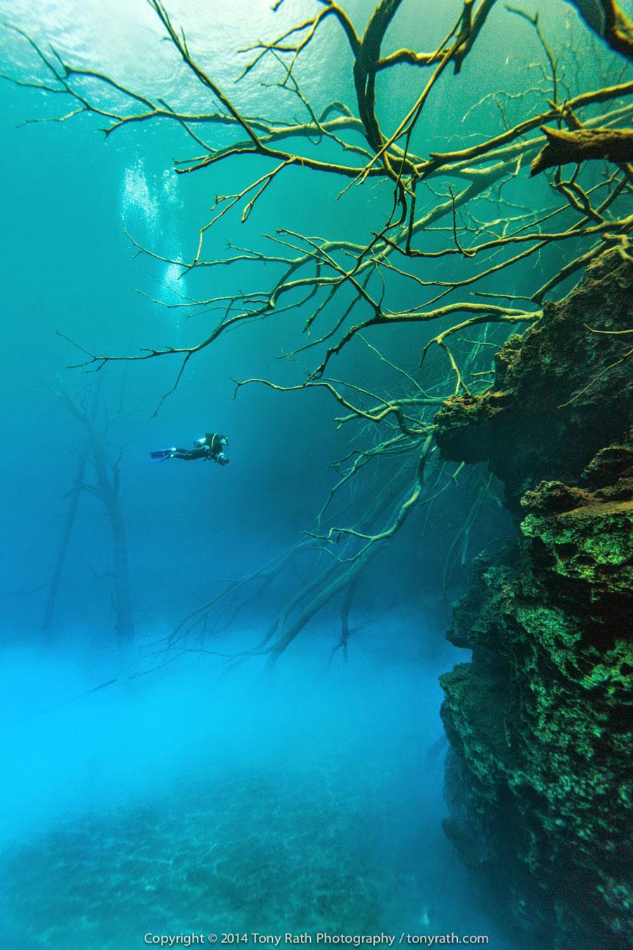 belize cara blanca natural pools diving